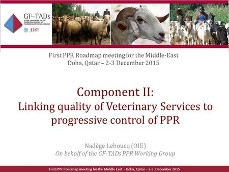 Component II: Linking quality of Veterinary Services to progressive control of PPR Nadège Leboucq (OIE) On behalf of the GF-TADs PPR Working Group First.