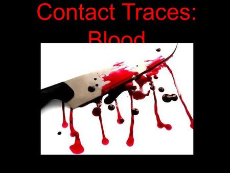 Contact Traces: Blood. Serology: The study of blood and other liquids in forensics. Taking a sample of blood off the car windscreen.