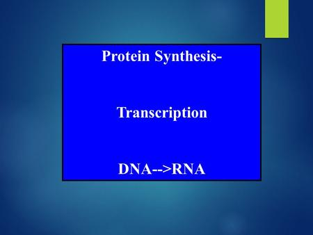 Protein Synthesis- Transcription DNA-->RNA. Expression of Gene or Protein Synthesis I. Transcription A. Initiation B. Elongation C. Termination D. RNA.