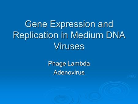Gene Expression and Replication in Medium DNA Viruses Phage Lambda Adenovirus.