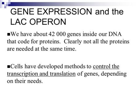 GENE EXPRESSION and the LAC OPERON We have about 42 000 genes inside our DNA that code for proteins. Clearly not all the proteins are needed at the same.