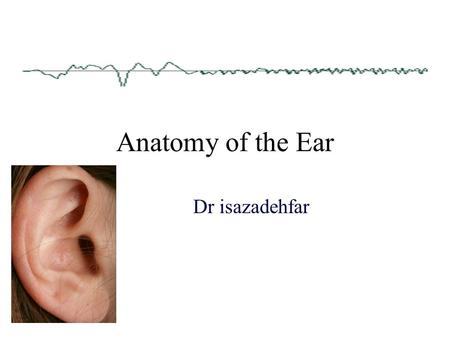 Anatomy of the Ear Dr isazadehfar. Major Divisions of the Ear Peripheral MechanismCentral Mechanism Outer Ear Middle Ear Inner Ear VIII Cranial Nerve.