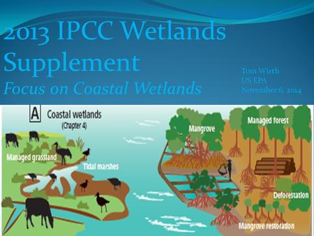 2013 IPCC Wetlands Supplement Focus on Coastal Wetlands Tom Wirth US EPA November 6, 2014.
