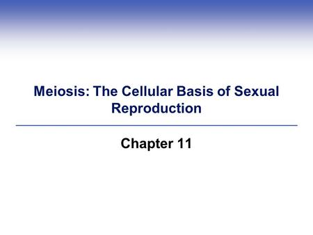 Meiosis: The Cellular Basis of Sexual Reproduction Chapter 11.