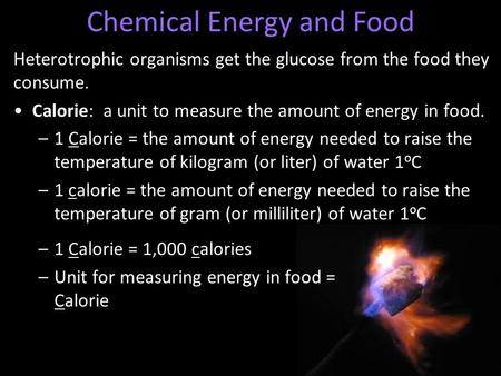 Heterotrophic organisms get the glucose from the food they consume. Calorie: a unit to measure the amount of energy in food. –1 Calorie = the amount of.