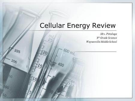 Cellular Energy Review Mrs. Pittaluga 8 th Grade Science Waynesville Middle School.