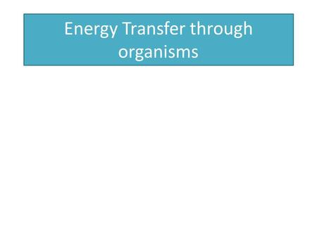 Energy Transfer through organisms. Energy flows through an ecosystem, being transferred from one organism to the next. Energy cannot be created or destroyed,