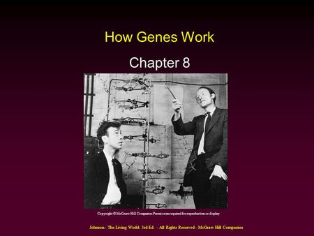 Johnson - The Living World: 3rd Ed. - All Rights Reserved - McGraw Hill Companies How Genes Work Chapter 8 Copyright © McGraw-Hill Companies Permission.