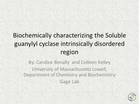 Biochemically characterizing the Soluble guanylyl cyclase intrinsically disordered region By: Candice Benally and Colleen Kelley University of Massachusetts.