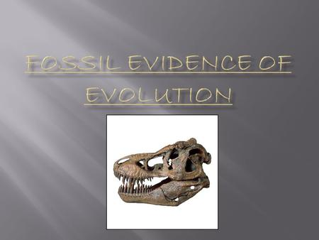  The Fossil Record – made up of all the fossils ever discovered on Earth  provides evidence that species have changed over time  Fossil – the remains.