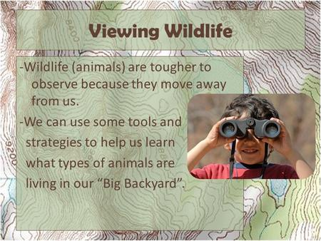Viewing Wildlife -Wildlife (animals) are tougher to observe because they move away from us. -We can use some tools and strategies to help us learn what.