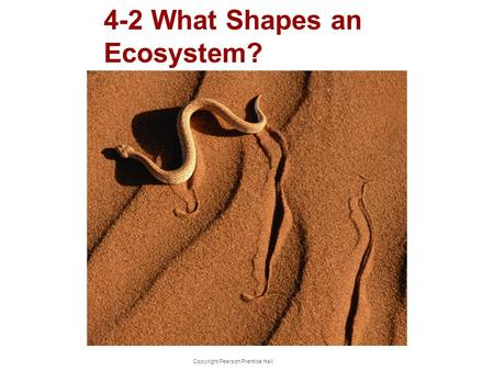 Copyright Pearson Prentice Hall 4-2 What Shapes an Ecosystem?