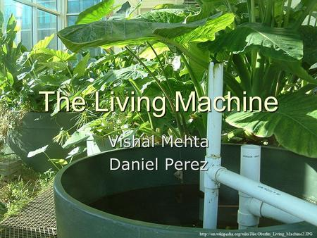 The Living Machine Vishal Mehta Daniel Perez