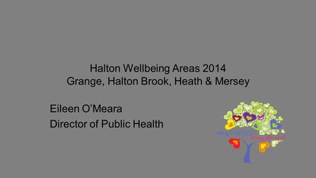 Halton Wellbeing Areas 2014 Grange, Halton Brook, Heath & Mersey Eileen O'Meara Director of Public Health.