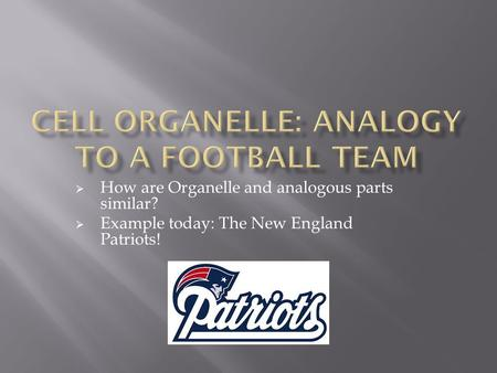  How are Organelle and analogous parts similar?  Example today: The New England Patriots!