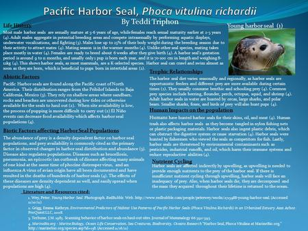 Literature and Resources cited: 1. 1. Wey, Peter. Young Harbor Seal. Photograph. RedBubble. Web.