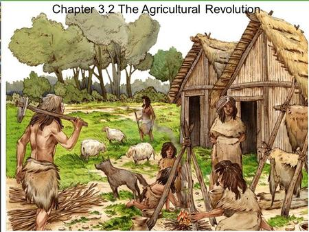 Chapter 3.2 The Agricultural Revolution. Early farmers.