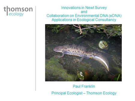 Innovations in Newt Survey and Collaboration on Environmental DNA (eDNA) Applications in Ecological Consultancy Paul Franklin Principal Ecologist – Thomson.