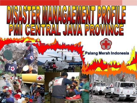 PMI Central Java Province 1 PMI Province in Semarang 35 PMI Branches About 700 Staffs of PMI Central Java and the branches More than 2000 volunteers.