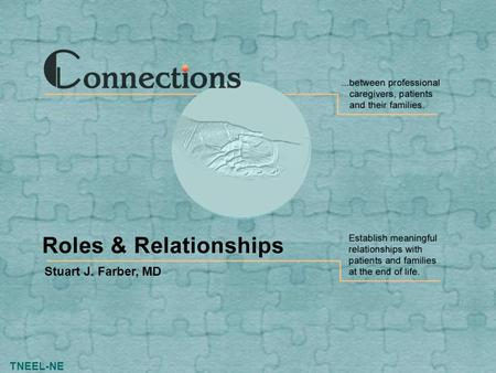 TNEEL-NE Stuart J. Farber, MD. Slide 2 Connections: Roles & Relationships TNEEL-NE Roles & Relationships Four types of roles that you can play in the.