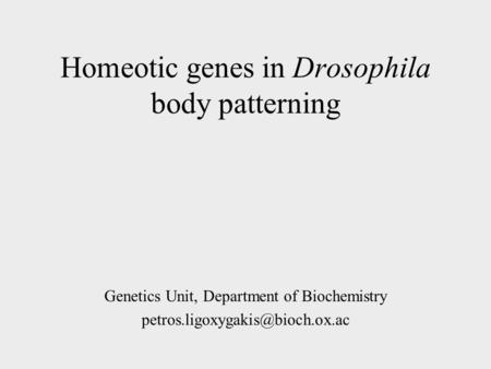 Homeotic genes in Drosophila body patterning Genetics Unit, Department of Biochemistry
