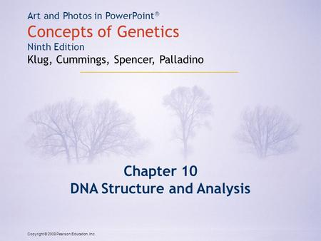 Copyright © 2009 Pearson Education, Inc. Art and Photos in PowerPoint ® Concepts of Genetics Ninth Edition Klug, Cummings, Spencer, Palladino Chapter 10.