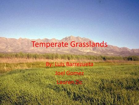 Temperate Grasslands By: Luis Barrezueta Joel Gomez Lauren Zic.