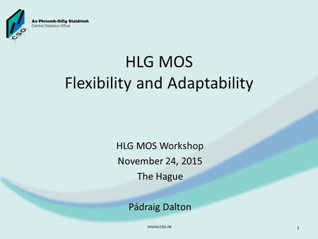 HLG MOS Flexibility and Adaptability HLG MOS Workshop November 24, 2015 The Hague Pádraig Dalton www.cso.ie 1.