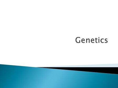 Genetics is the study of how traits are passed from parents to offspring.  Heredity is the actual passing of traits from parents to offspring.