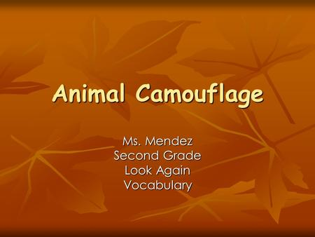 Animal Camouflage Ms. Mendez Second Grade Look Again Vocabulary.