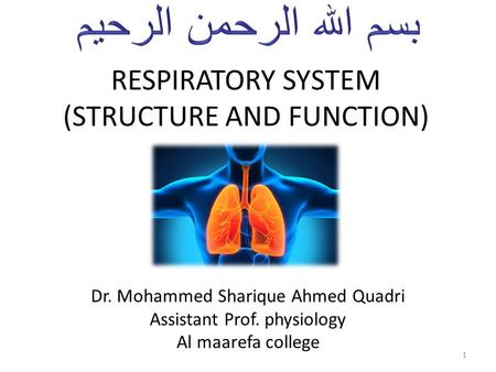 RESPIRATORY SYSTEM (STRUCTURE AND FUNCTION) Dr. Mohammed Sharique Ahmed Quadri Assistant Prof. physiology Al maarefa college 1.