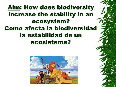 Aim: How does biodiversity increase the stability in an ecosystem? Como afecta la biodiversidad la estabilidad de un ecosistema?