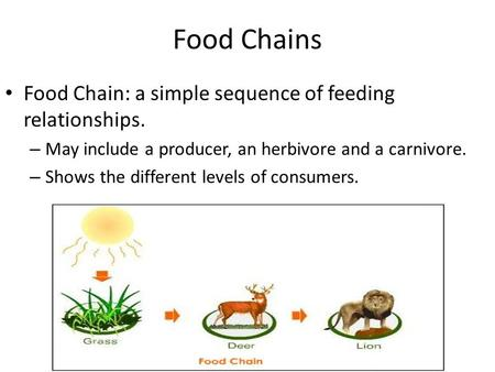Food Chains Food Chain: a simple sequence of feeding relationships. – May include a producer, an herbivore and a carnivore. – Shows the different levels.