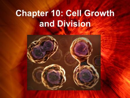 Chapter 10: Cell Growth and Division. Limits to Cell Growth Why do cells need to remain small? Cells divide rather than grow larger for two main reasons.