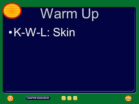 Warm Up K-W-L: Skin. Your Largest Organ Your skin is the largest organ of your body. Much of the information you receive about your environment comes.