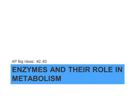 ENZYMES AND THEIR ROLE IN METABOLISM AP Big Ideas: #2, #3.
