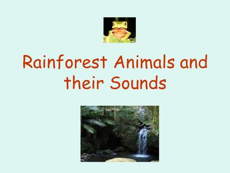 Rainforest Animals and their Sounds Rainforest Animals Cockatoo Toucan Red-Eyed Tree FrogRed-Eyed Tree Frog Jaguar Tiger Chimpanzee Elephant Learn how.
