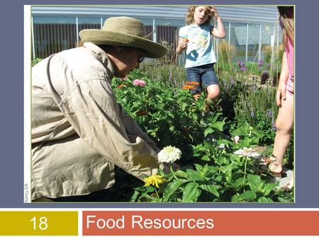 18 Food Resources. © 2015 John Wiley & Sons, Inc. All rights reserved. Overview of Chapter 18  World Food Security  Food Production  Challenges of.