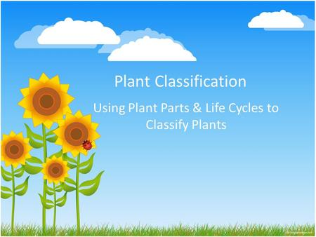 Using Plant Parts & Life Cycles to Classify Plants