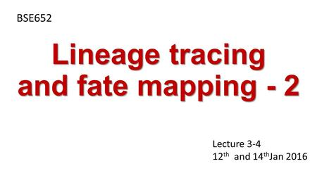 Lineage tracing and fate mapping - 2 BSE652 Lecture 3-4 12 th and 14 th Jan 2016.