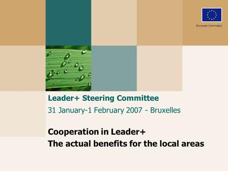 Leader+ Steering Committee 31 January-1 February 2007 - Bruxelles Cooperation in Leader+ The actual benefits for the local areas European Commission.