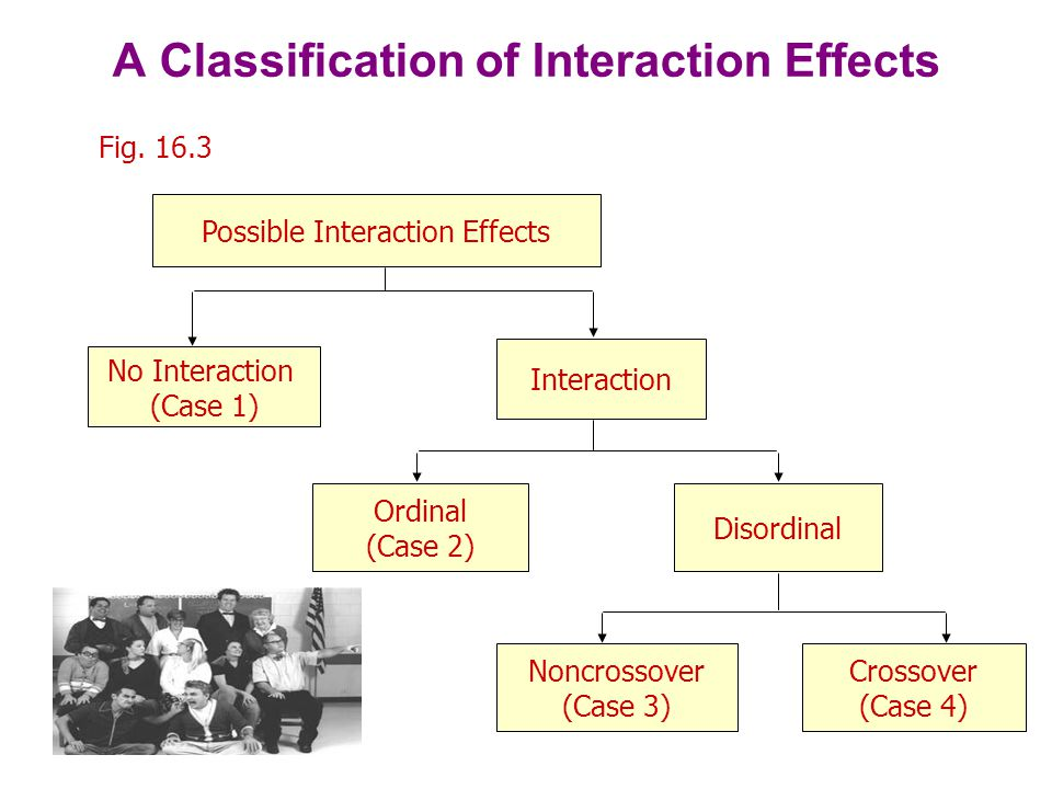 Patterns of Interaction Fig.
