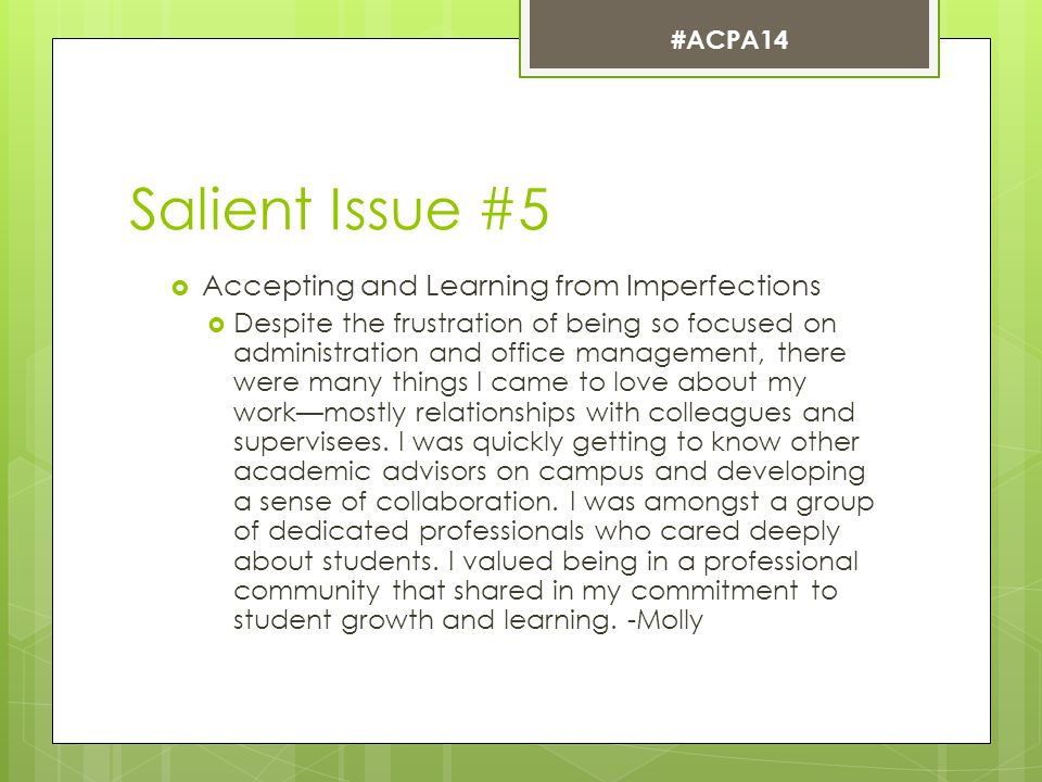 Salient Issue #5  Accepting and Learning from Imperfections  Despite the frustration of being so focused on administration and office management, there were many things I came to love about my work—mostly relationships with colleagues and supervisees.