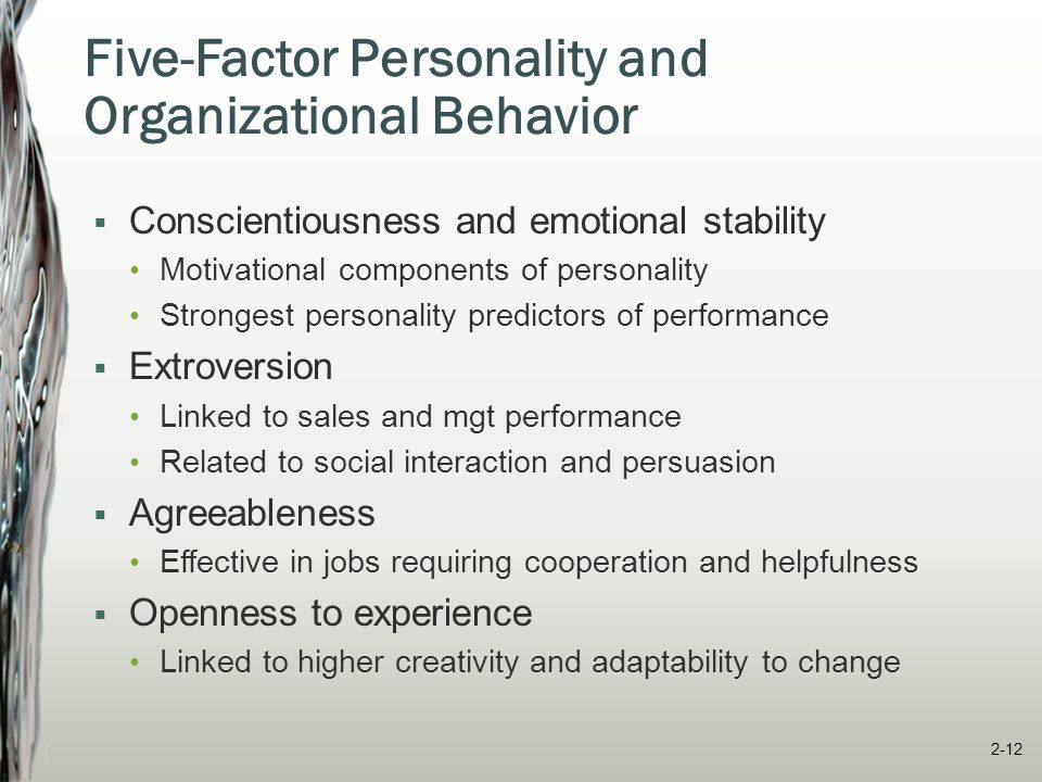 Common Personality Measures  MMPI – Minnesota Multiphasic Personality Inventory measures emotional stability on 10 scales http://psychology.about.com/od/psychologicaltesting/a/mmpi_2.htm http://psychology.about.com/od/psychologicaltesting/a/mmpi_2.htm  MBTI – Meyers Briggs Type Indicator  CPI – California Psychological Inventory  HPI - Hogan Personality Inventory McShane/Von Glinow OB 5e © 2010 The McGraw-Hill Companies, Inc.