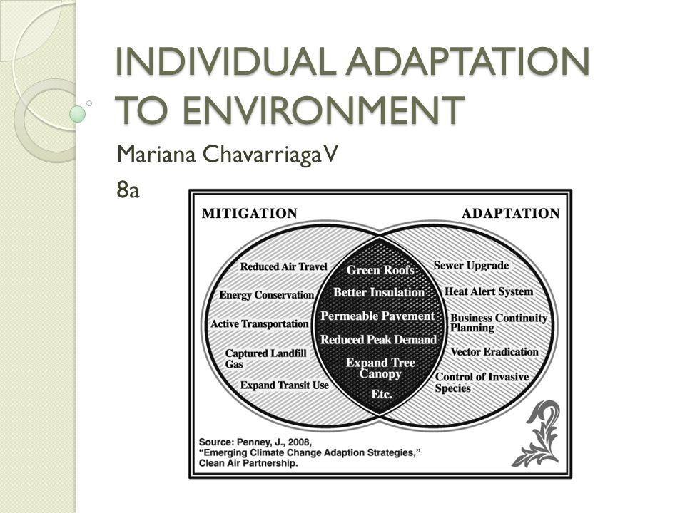 INDIVIDUAL ADAPTATION TO ENVIRONMENT Factors that affect future population population mortality emigration natality immigration