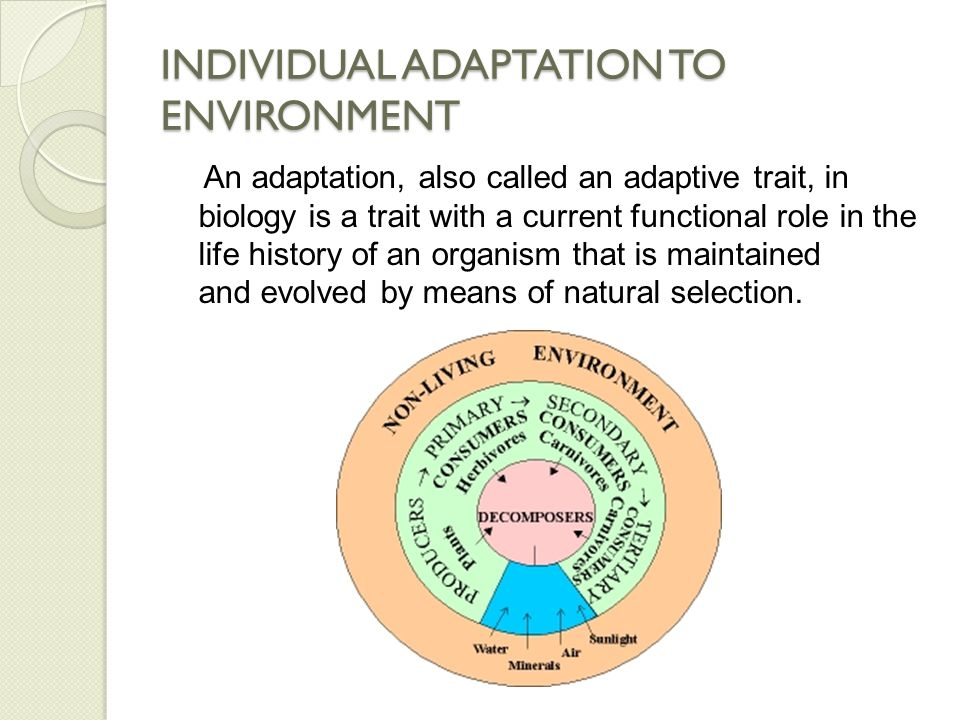 INDIVIDUAL ADAPTATION TO ENVIRONMENT Adaptation refers to both the current state of being adapted and to the dynamic evolutionary process that leads to the adaptation.