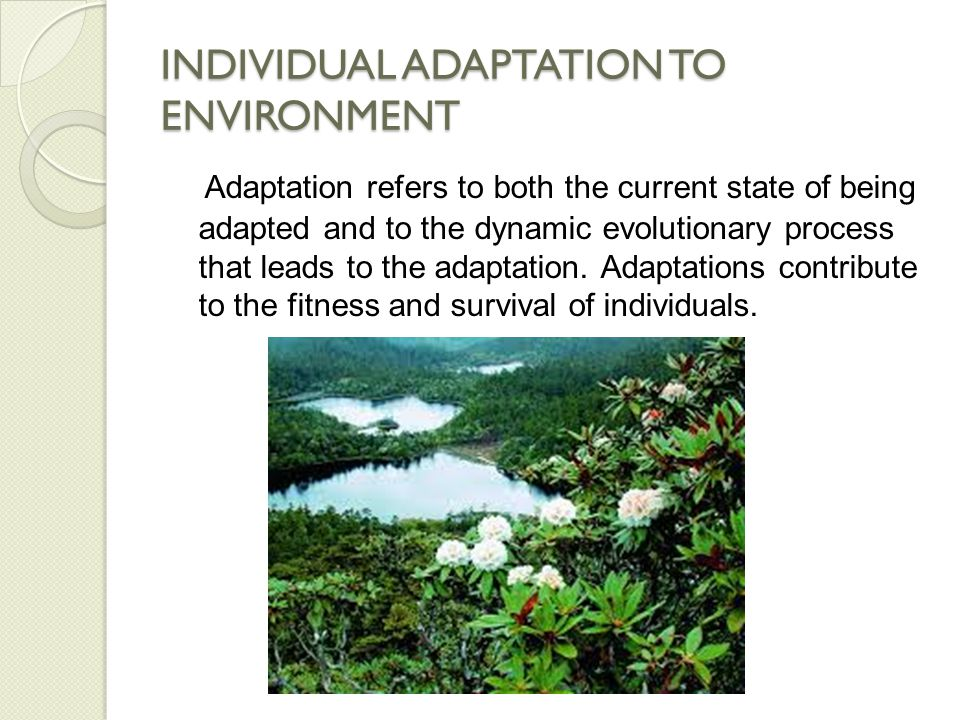 INDIVIDUAL ADAPTATION TO ENVIRONMENT Organisms face a succession of environmental challenges as they grow and develop and are equipped with an adaptive plasticity as the phenotype of traits develop in response to the imposed conditions.