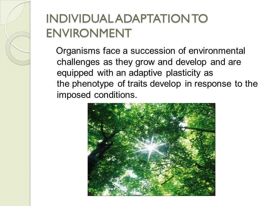 INDIVIDUAL ADAPTATION TO ENVIRONMENT The developmental norm of reaction for any given trait is essential to the correction of adaptation as it affords a kind of biological insurance or resilience to varying environments.