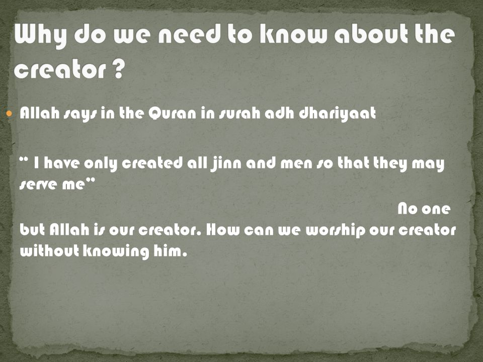 Allah says in the Quran in surah adh dhariyaat I have only created all jinn and men so that they may serve me No one but Allah is our creator.