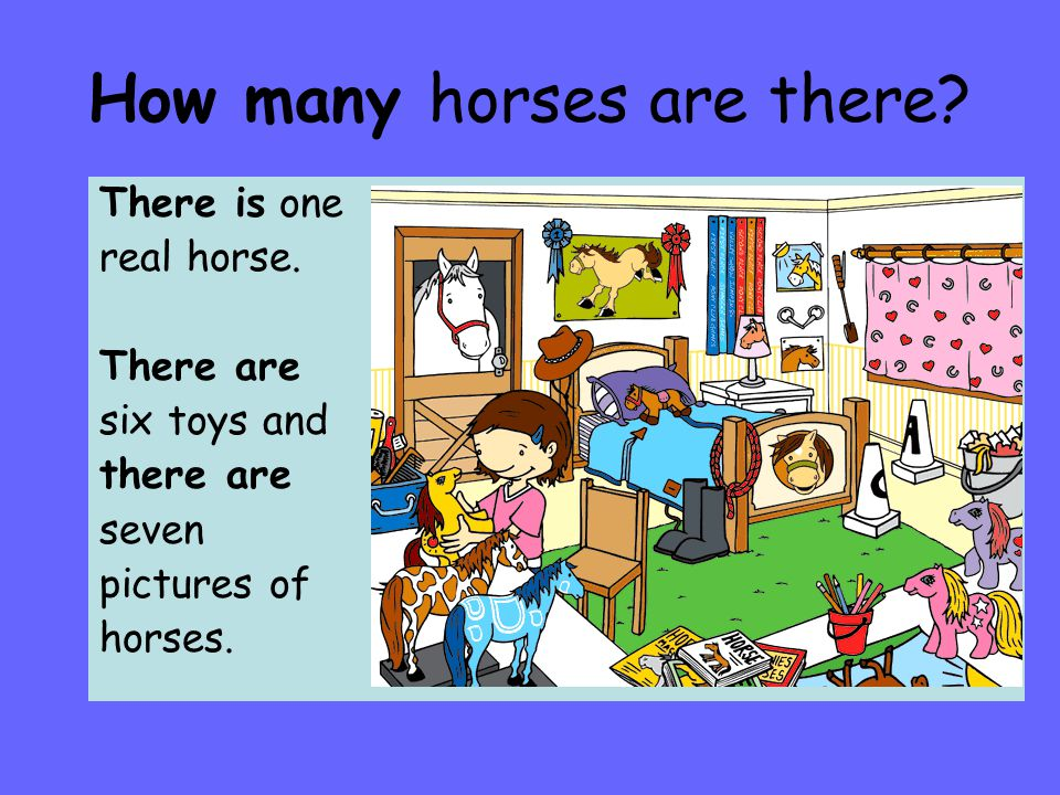 How many horses are there.There is one real horse.